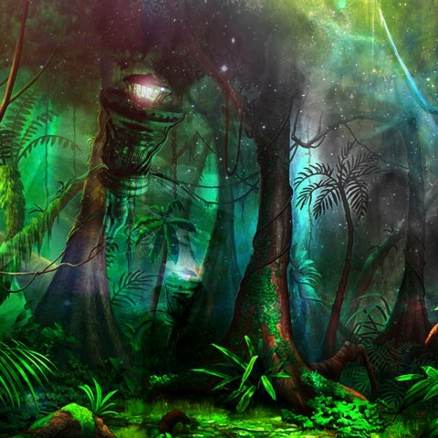 Intro jungle